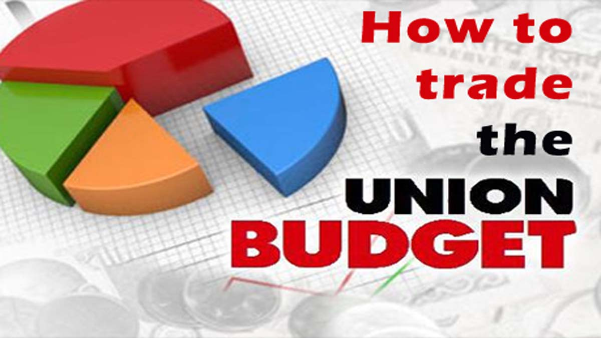 Guide To Heavy Profits On Union Budget Day 2014 India